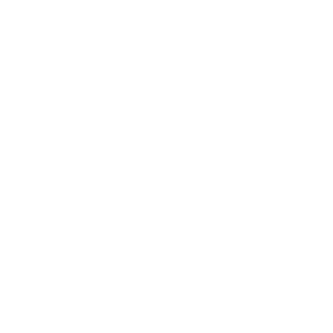 fns-iconcircle-white-transparent